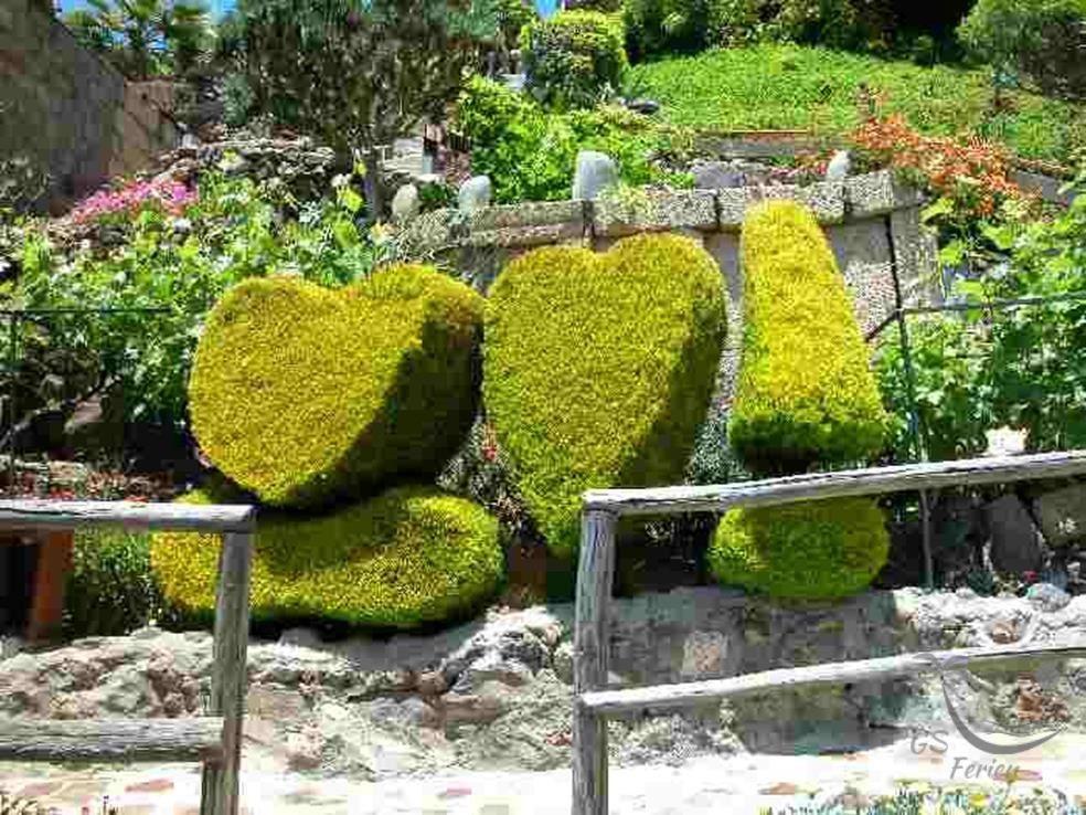 Finca Jaral / garden